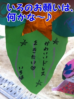 IMG_7034.JPG